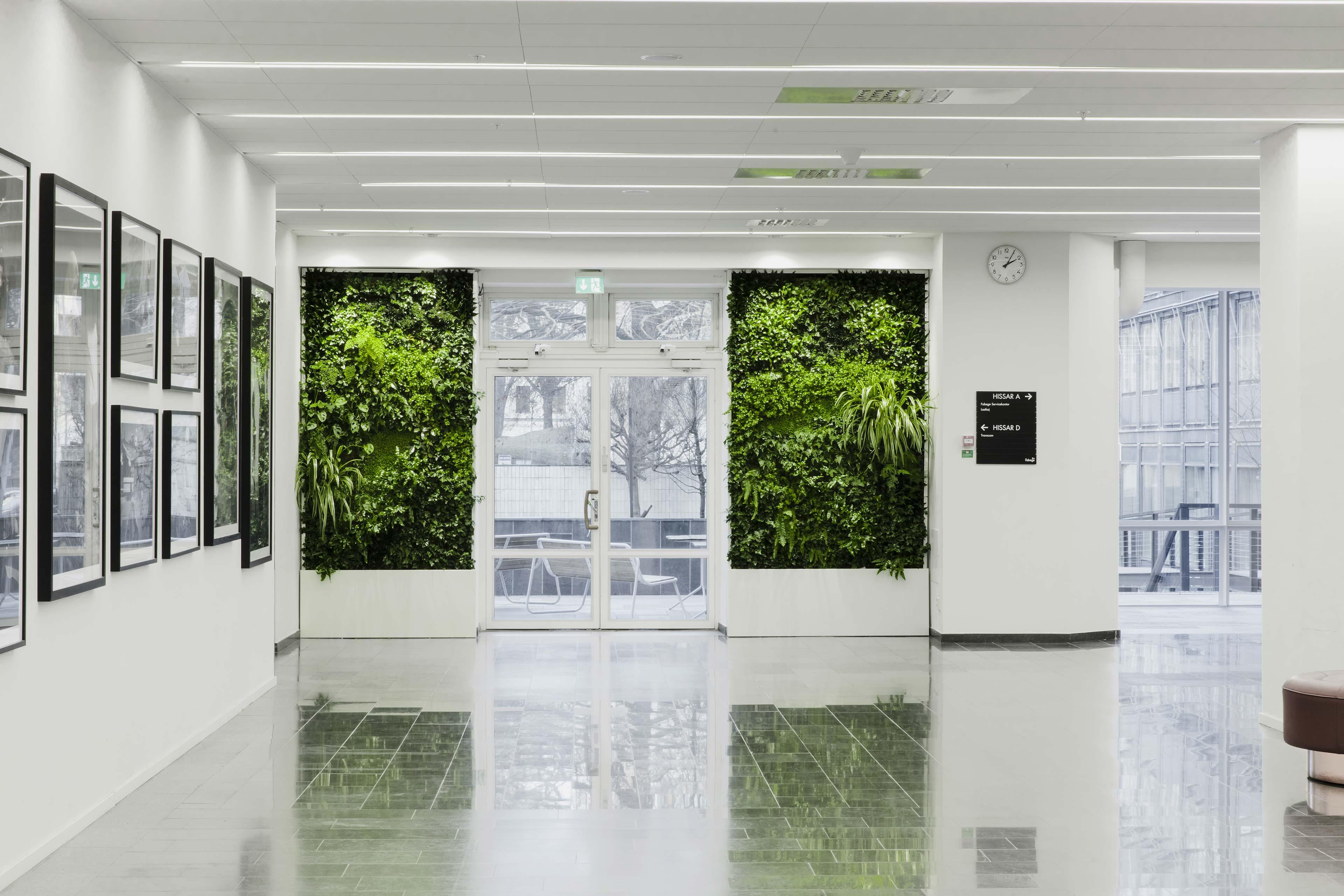 Inbygdda växtväggar från Vertical Plants System på DNs kontor