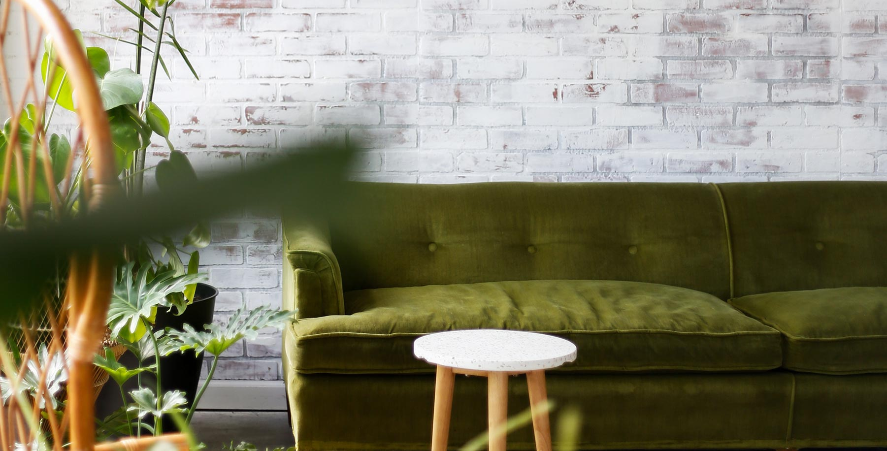 Växter i förgrunden i ett vardagsrum med grön sammetssoffa och vit tegelvägg