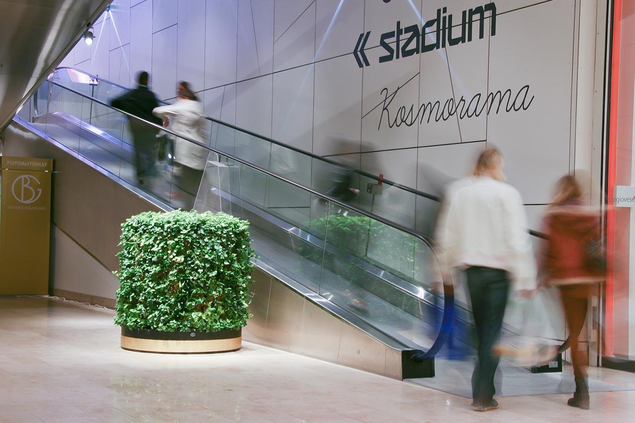 Växtinredning från Vertical Plants System i Mirum Galleria